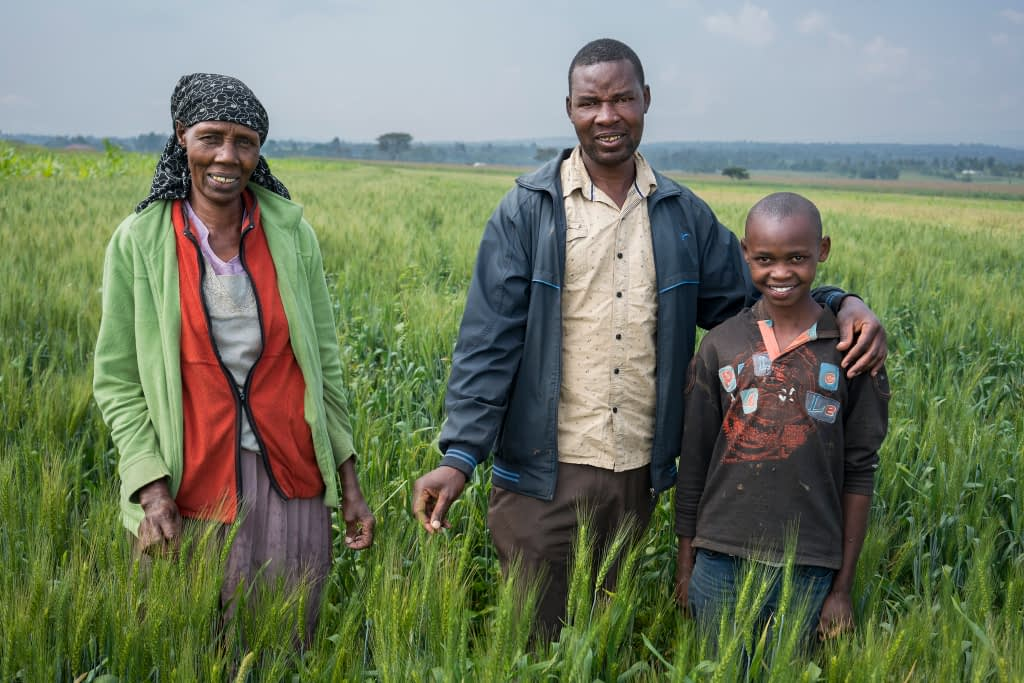 Family farmer Geofrey Kurgat (center) with his mother Elice Tole (left) and his nephew Ronny Kiprotich in their 1-acre field of Korongo wheat near Belbur, Nukuru, Kenya. (Photo: Peter Lowe/CIMMYT)