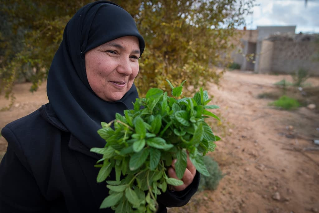 Building resilience for smallholder farmers in marginal drylands. (Photo: ICARDA)