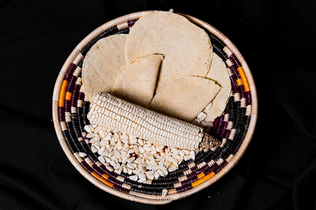 Maize-flour tortillas, a staple food eaten daily in Mexico and across Central America. (Photo: Alfonso Cortés/CIMMYT)
