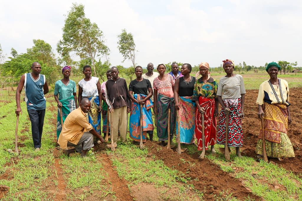 """""""We didn't know that potatoes, millet and sorghum could grow here, because we thought the soil wasn't suitable, but the school has showed us what is possible,"""" explains Maxwell Phiri (first from left). """"You learn a lot of things in a group that you might not learn on your own."""" (Photo: Emma Orchardson/CIMMYT)"""