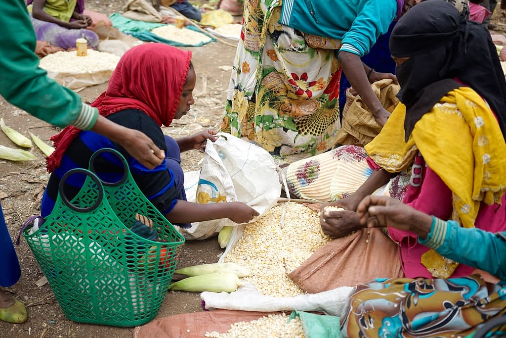 A woman sells maize at the market in Sidameika Tura, Arsi Negele, Ethiopia. (Photo: Peter Lowe/CIMMYT)
