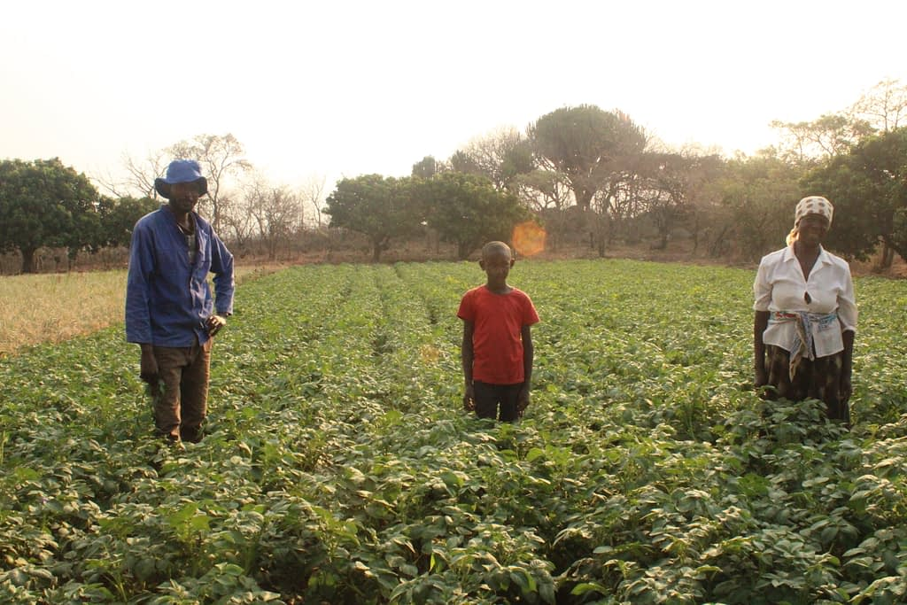 Michael Duri stands with his son and mother next to his potato field in Nyanga, Zimbabwe. (Photo: Shiela Chikulo)