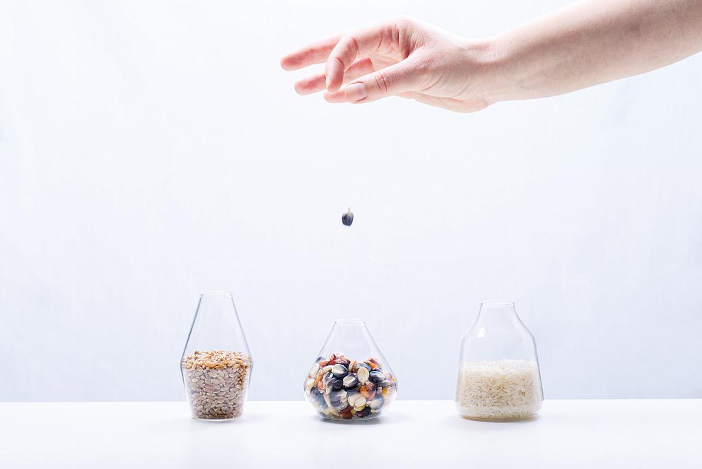 Cereals matter. (Photo: Alfonso Cortés/CIMMYT)