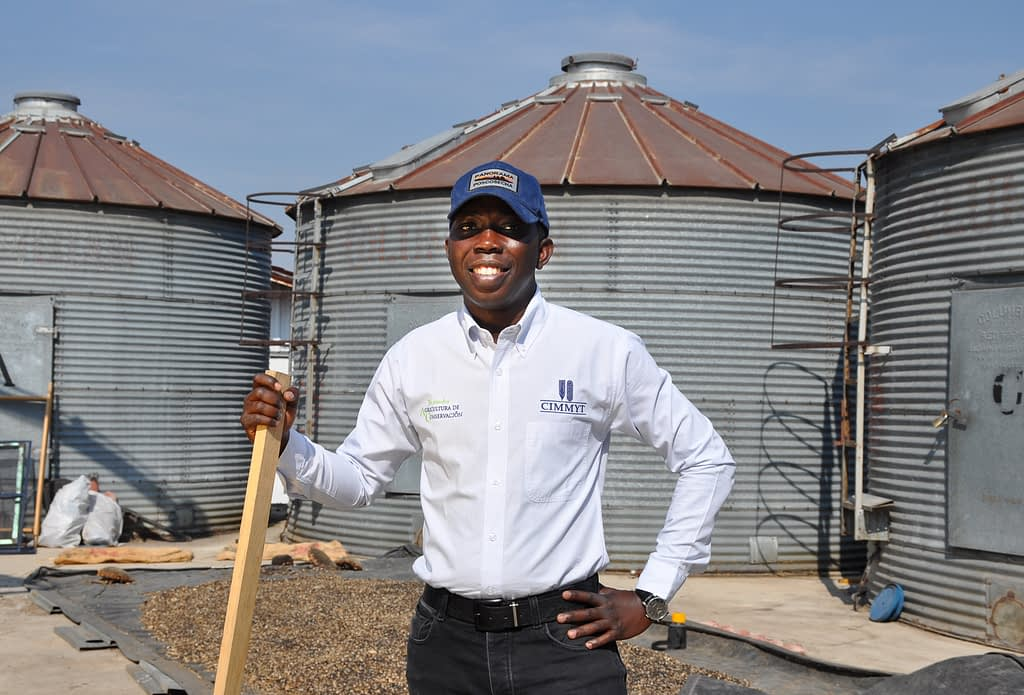 """""""A lot of people think postharvest just means storage, but it actually encompasses everything from the moment of harvest and includes processes like drying, shelling, technical and economic activities,"""" Odjo explains. (Photo: Francisco Alarcón/CIMMYT)"""