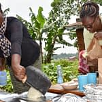 Ugali made with different maize varieties is served to participants of a sensory evaluation in Kakamega County, Kenya. (Photo: Joshua Masinde/CIMMYT)