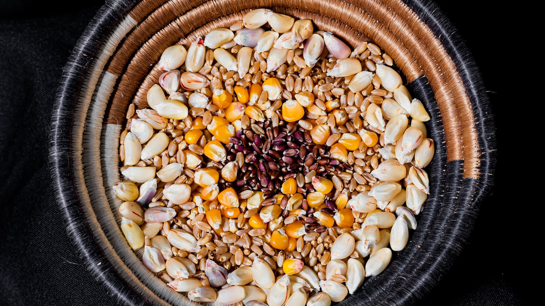 An assortment of whole, unprocessed maize and wheat kernels is displayed in a basket. (Photo: Alfonso Cortés/CIMMYT)