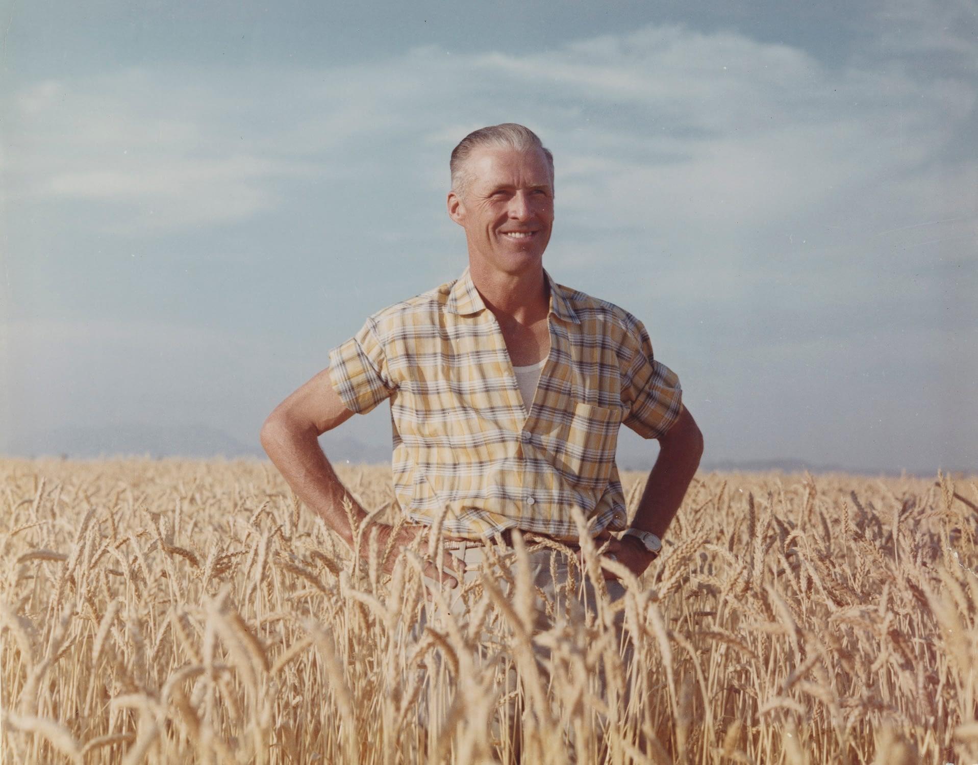 Norman E. Borlaug stands on a wheat field in Ciudad Obregón, Sonora state, Mexico. (Photo: CIMMYT)