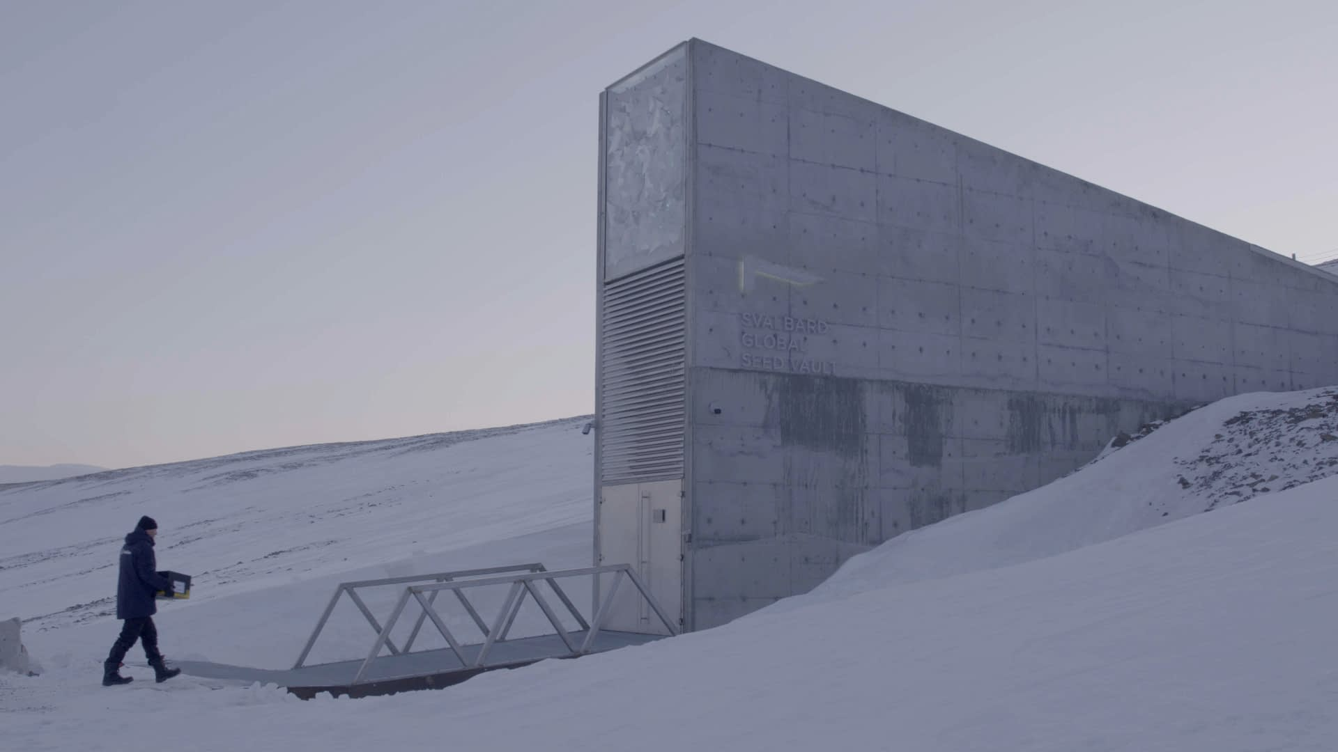 A NordGen staff member brings a box of seed into the Global Seed Vault in Svalbard, Norway. (Photo: Thomas Sonne/Common Ground Media for NordGen)