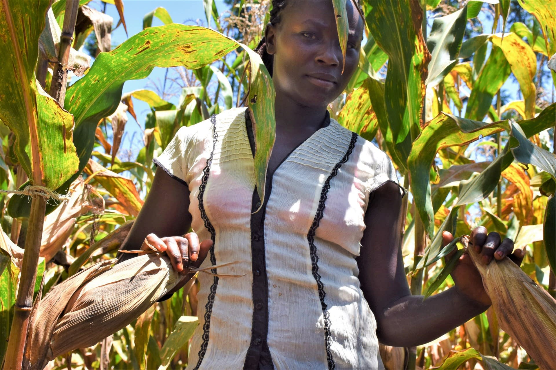 In Embu County, Kenya, 25-year-old Jackline Wanja stands in a demonstration plot of high-yielding, drought-resilient and fast-maturing maize varieties. (Photo: Joshua Masinde/CIMMYT)