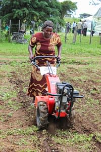 Demonstration of a minitiller, Naivasha, Kenya. (Photo: Matt O' Leary/CIMMYT)