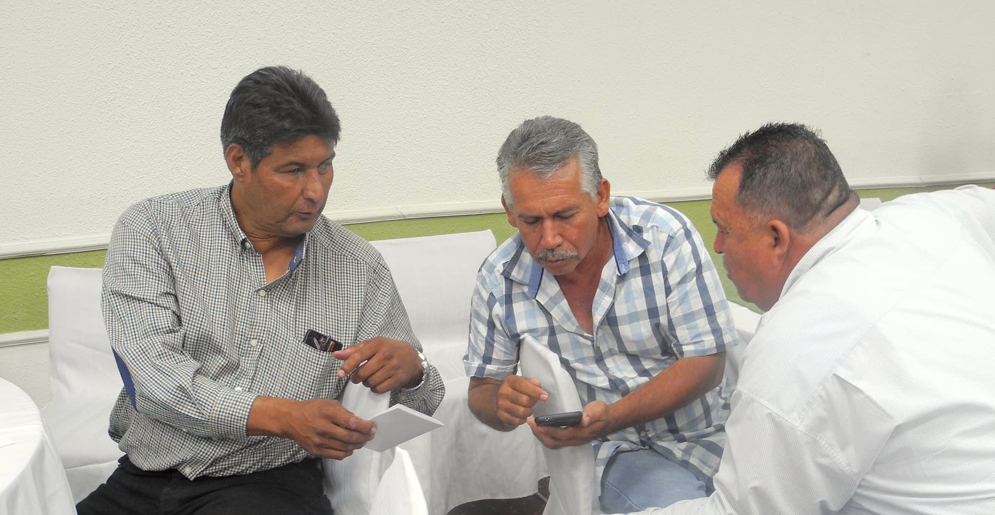 Local farmers test out the COMPASS smartphone app at the workshop in Ciudad Obregon, Sonora state, Mexico. (Photo: Alison Doody/CIMMYT)