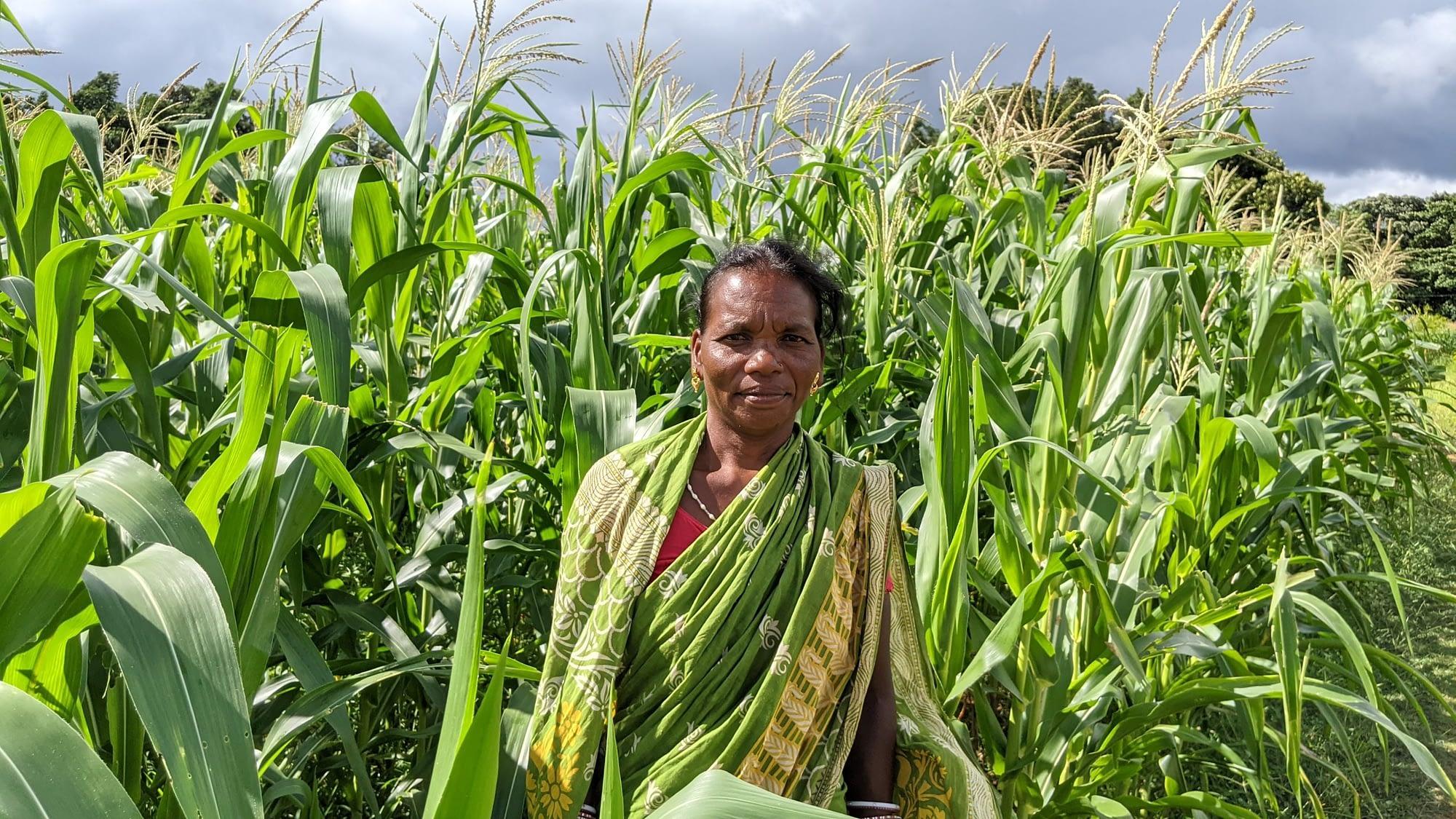 Farmer Anita Naik stands for a photograph next to her maize field. (Photo: Nima Chodon/CIMMYT)