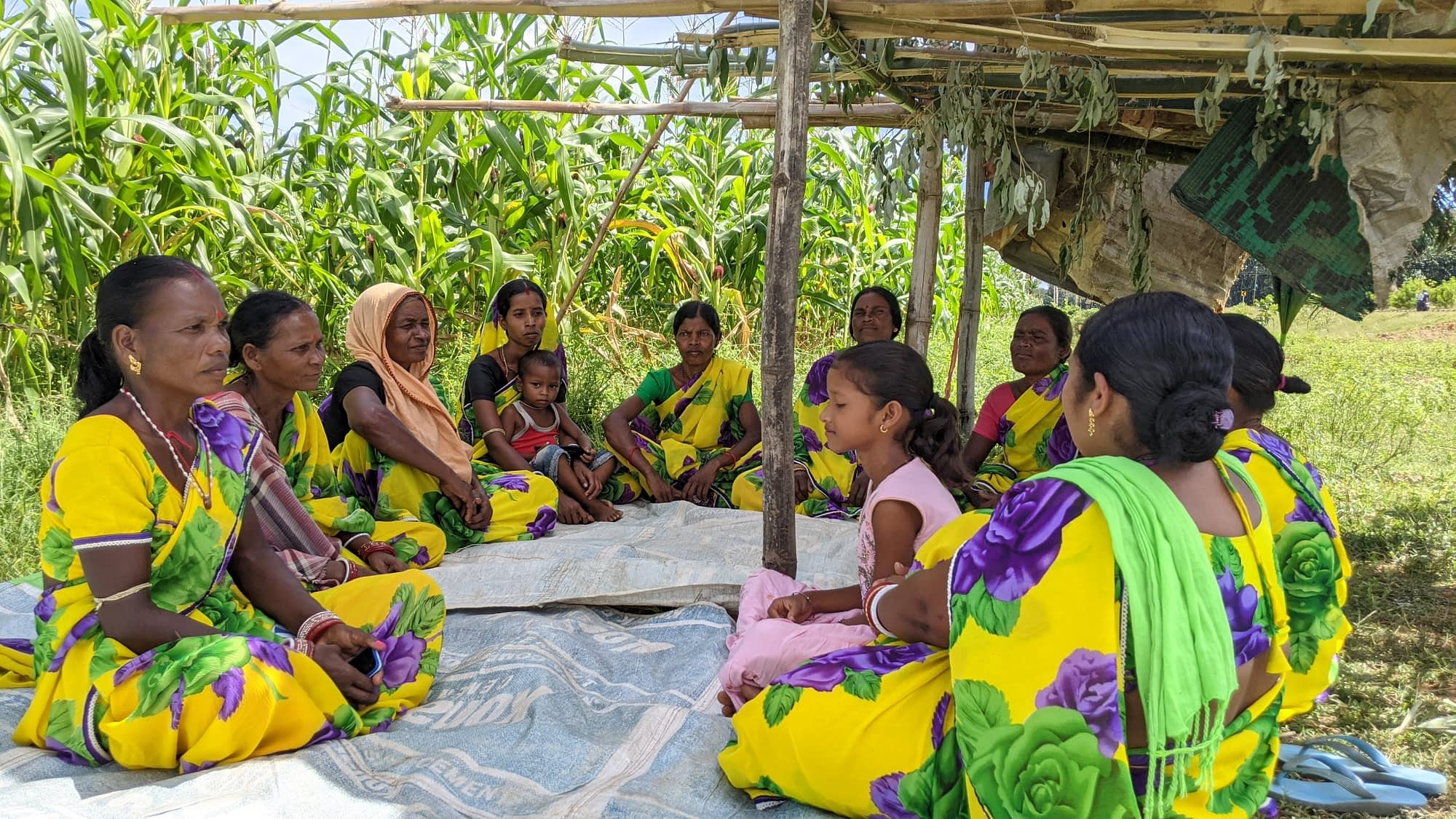 Anita Naik (first from left) meets with her self-help group Biswa Jay Maa Tarini in village of Badbil, in the Mayurbhanj district of India's Odisha state. Together, they work on a five-acre lease land, where they grow maize commercially. (Photo: CIMMYT)