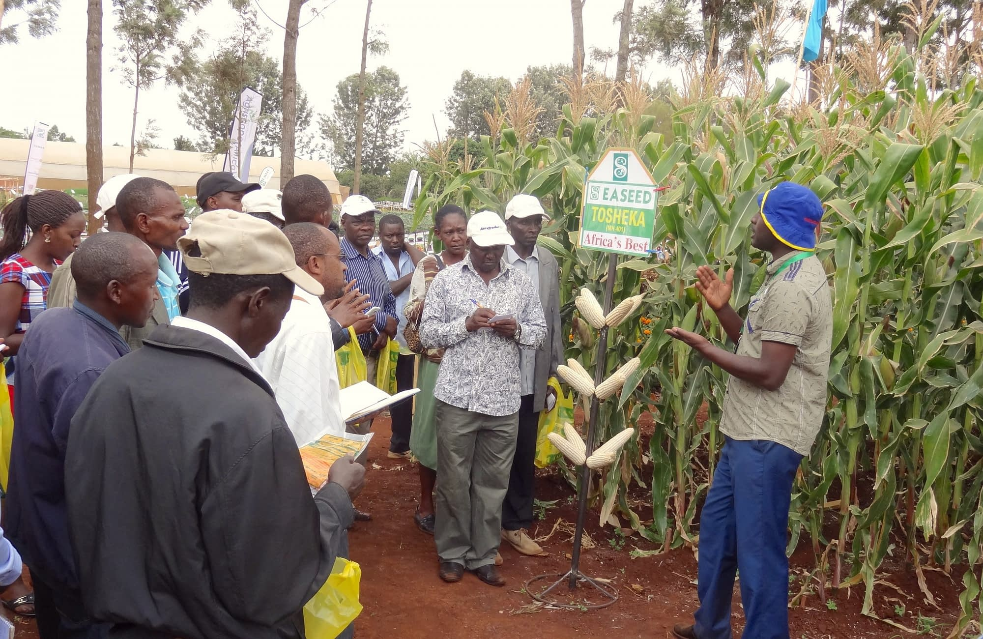 Farmers at a demonstration farm field day organized by East African Seed Company. (Photo: Courtesy)