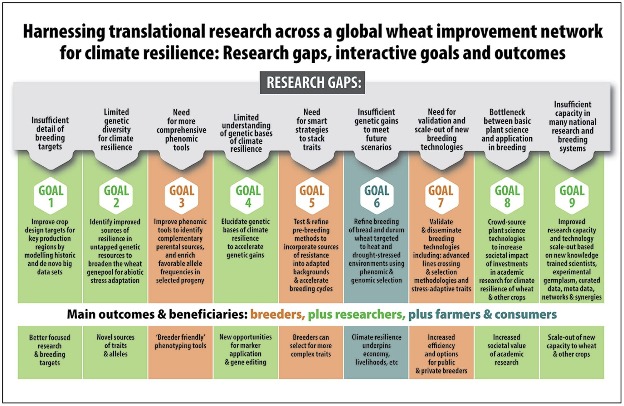 Harnessing research across a global wheat improvement network for climate resilience: research gaps, interactive goals, and outcomes.
