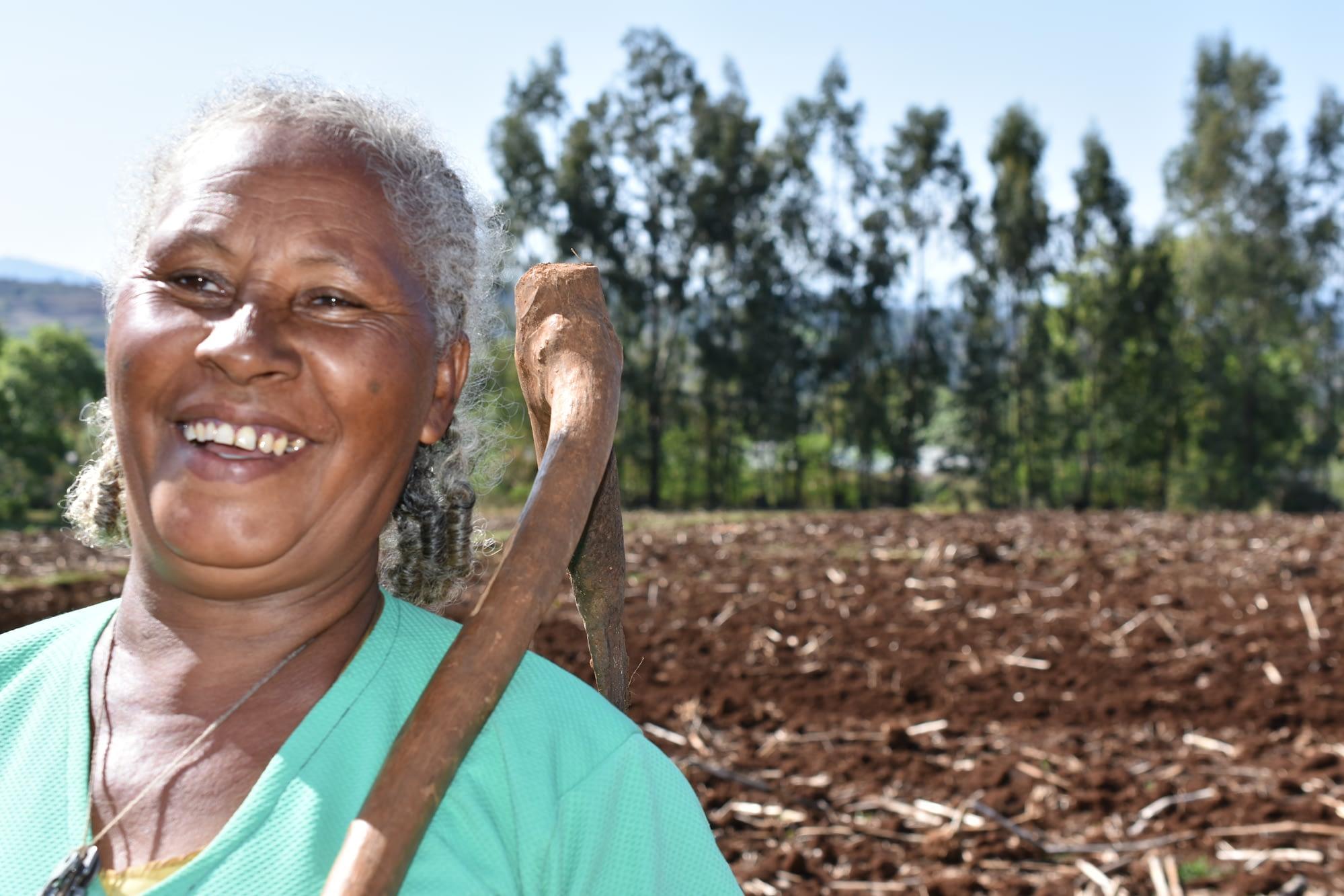 Sequare Regassa stands next to her fields holding a wooden farming tool. (Photo: Simret Yasabu/CIMMYT)