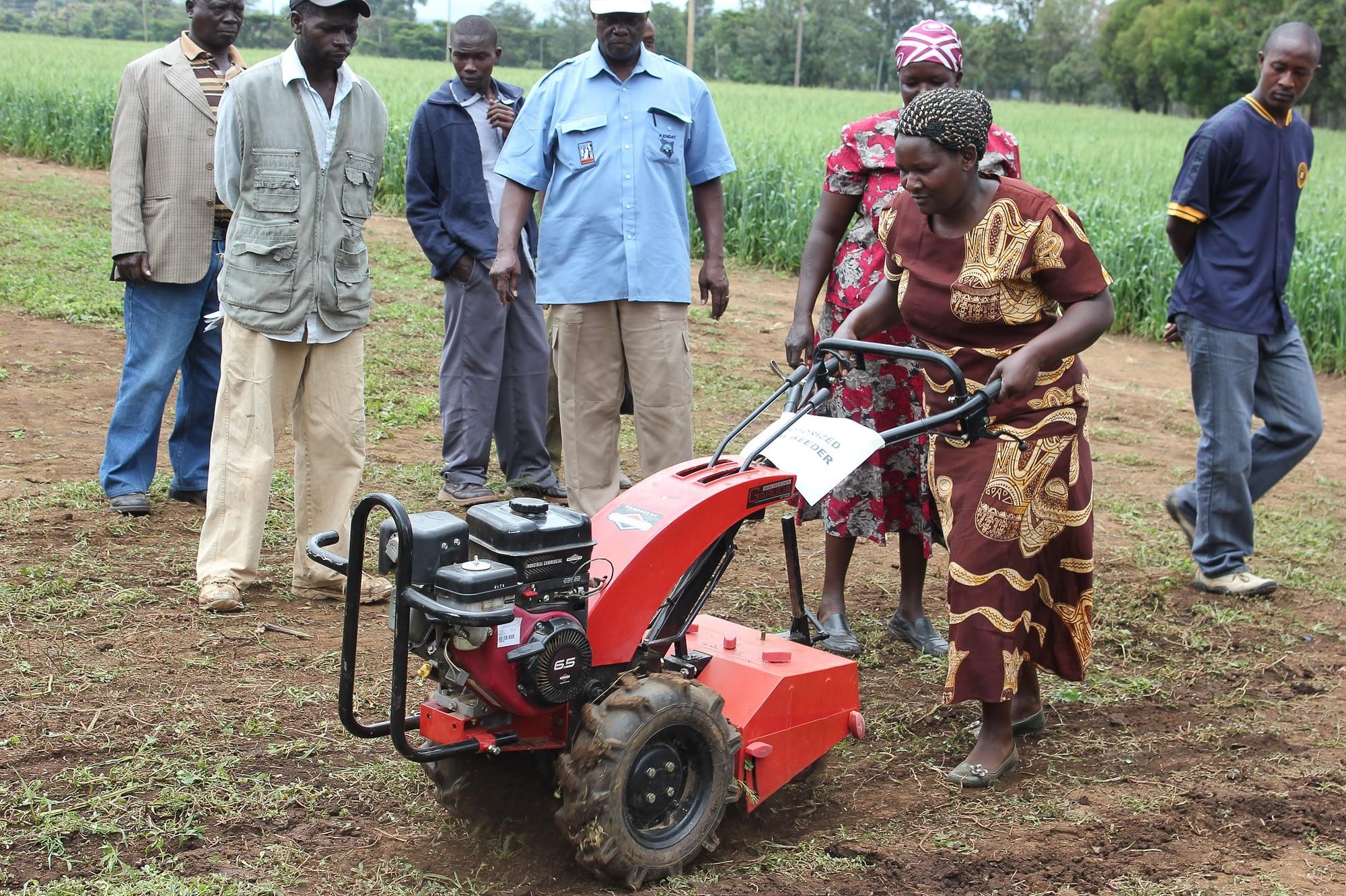 Demonstration of a minitiller, Naivasha, Kenya. (Photo: CIMMYT)