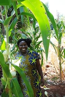 Mercy Wawira, farmer who participated in the IMAS on-farm trial in Kenya's Embu County