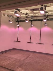 Speed breeding room at Toluca station. The Heliospectra lights support the faster growth of plants. (Photo: Suchismita Mondal/CIMMYT)