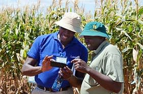 Paul Imo (left), a participant at the seed production and management course, compares notes on his phone with a colleague during a visit to the Kiboko research station. Photo: Michael Arunga/CIMMYT