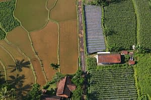 Aerial view of the landscape around Halimun Salak National Park, West Java, Indonesia. (Photo: Kate Evans/CIFOR)