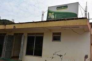 Masindi Seed Company offices in Masindi town. (Photo: Joshua Masinde/CIMMYT)