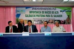 Salvador1-300x200