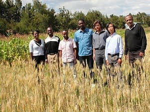 The GCAP-Ethiopia team stands in the demonstration plot. From left to right: Yodit Kebede, Ph.D. candidate; Michael Misiko, innovation scientist; Tesfaye Shiferaw, Ph.D. candidate; Dereje Tirfessa, research assistant; Frédéric Baudron, system agronomist; Hae Koo Kim, crop physiologist; and Elias Berta, project manager. Photo: Antenane Abeiy Ejigayehu