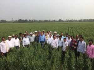 Kropff with with CIMMYT Bihar staff. Photo: Nynke Kropff-Nammensma/CIMMYT