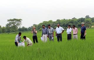 Visitors see a demonstration on greenhouse gas measurements in CIMMYT's long-term trial on conservation agriculture in rice-wheat systems at the Rajendra Agricultural University farm, Pusa. Photo: Deepak Kumar Singh/CIMMYT