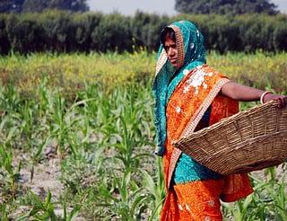 BISA-India-visit-Day-2-088
