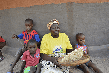 Cereal yields in sub-Saharan Africa must increase to 80 percent of their potential by 2050 to meet the enormous increase in demand for food. Photo: J. Siamachira/CIMMYT
