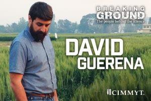 TwitterBG_DavidGuerena