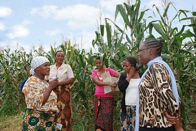 Farmers gather during a field day hosted by a seed company in Tanzania.