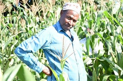 """""""Visits from Mponda helped me realize that good farm practices are necessary for any kind of crop to flourish,"""" Michael Kumbere shares, adding, """"I made sure to invest in fertilizer for Lubango, and I can already see that the yield benefits would outweigh any costs I incur."""""""
