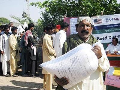 A Pakistani farmer carries seed of a new wheat variety for on-farm testing. Photo: Anju Joshi/CIMMYT