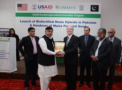 USAID Mission Director John Groarke (center) during the launching ceremony of the first QPM hybrids in Pakistan. Photo: Awais Yaqub