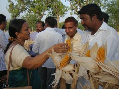 Joint Director of Agriculture, Chetana Patil talks to farmers during the field day. Photo: UAS, Raichur