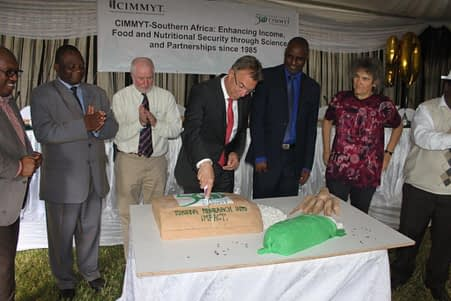 CIMMYT Director General Martin Kropff celebrating 50 years of CIMMYT at the organization's Southern Africa Regional Office. Photo: Johnson Siamachira/CIMMYT.