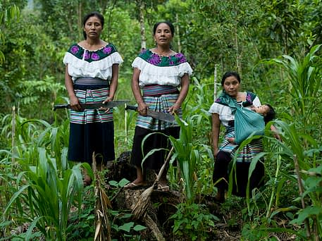 Women representing four generations from a maize farming family in Chiapas, Mexico. CIMMYT/ Peter Lowe