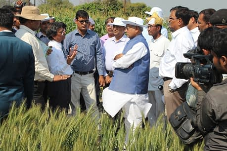 Farmers sharing their experiences with climate-smart practices during a field visit by the Chief Minister of Bihar. Photo: CIMMYT-BISA