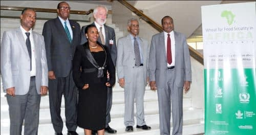 (From left): Dr. Solomon Aseffa (EIAR); Dr. Joseph M. Made (Zimbabwe); Ms. Odette Kayitesi (Burundi); Dr. Thomas A. Lumpkin (CIMMYT); Prof. Tekaligne Mamo (Ethiopia); and Dr. Ibrahim Adam Ahmed El-Dukheri (Sudan)