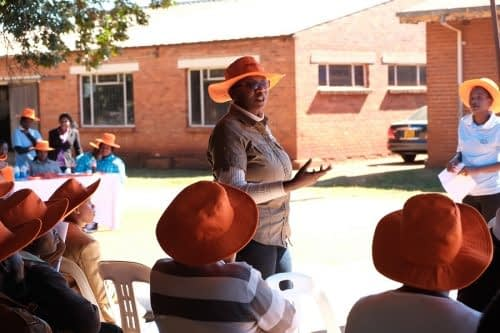 Sakile Kudita, HarvestPlus researcher, eplains the benefits of of biofortified orange maize to seed company and government representatives. Photo: Matthew O'Leary/ CIMMYT