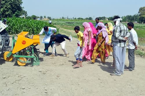 Direct sowing of rice (DSR) in Unchasaman village, Haryana. Photo: CIMMYT