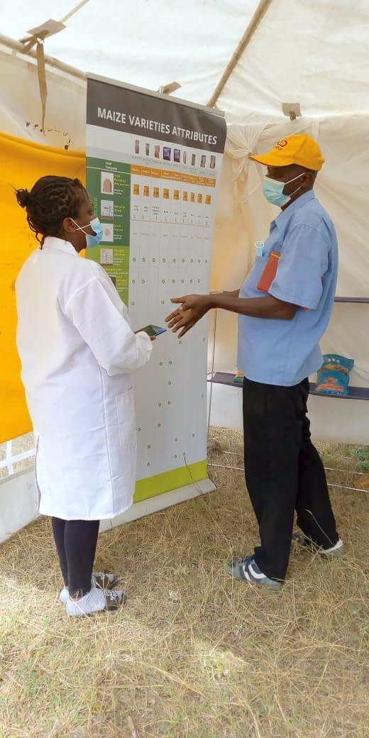 Pauline Muindi (left), gender research associate with CIMMYT, acts as a mock agrodealer clerk and attends a farmer. (Photo: CIMMYT)