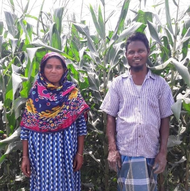 Anzuma Begam (left) and her husband, Hossain Ali, working together in their maize field.