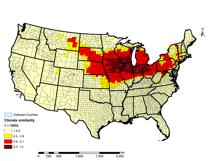 Figure: Maize-producing counties in the USA that are vulnerable to Tar Spot Complex (TSC) of maize, developed based on climate analogue model analysis procedure matching historic climatic data of 13 counties where TSC has been detected.