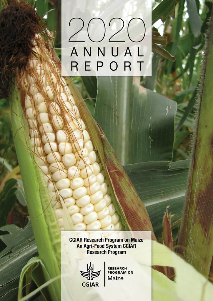 Read the 2020 MAIZE Annual Report