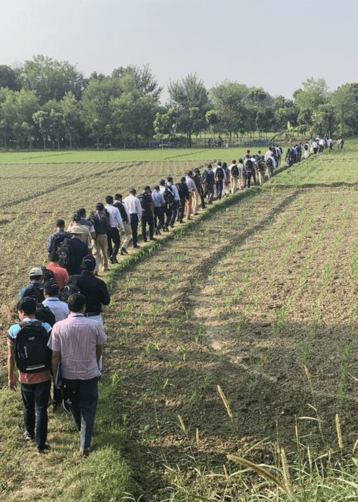 Participants of the Fighting Back against Fall Armyworm trainings visit farmers' fields in Chauadanga, Bangladesh. (Photo: Tim Krupnik/CIMMYT)
