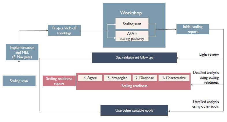 An overview of the proposed ILRI scaling process. (Graphic: ILRI)